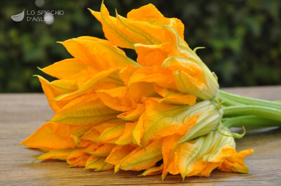 Ingrediente fiori di zucca le ricette dello spicchio d 39 aglio for Fiori di agosto