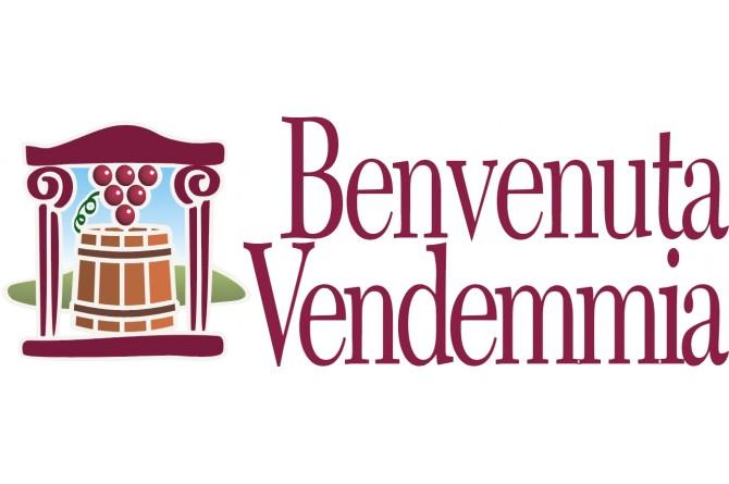 Benvenuta vendemmia in Veneto!
