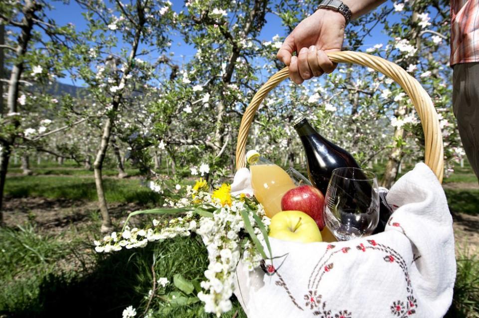 """Dal 5 al 19 aprile a Lama vi aspetta la primavera con la """"Festa della fioritura"""""""