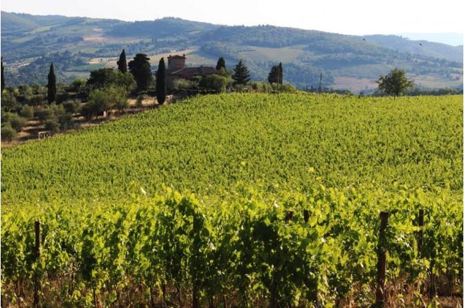 Dal 18 al 21 settembre torna Vino al Vino a Panzano in Chianti