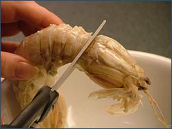 scuola di cucina - pulire le canocchie - le ricette dello spicchio ... - Cucinare Le Canocchie